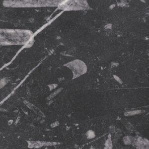 marmo fossil black
